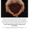 Legume Science Post #6 Feb-2-2021 - Beans for Heart Health