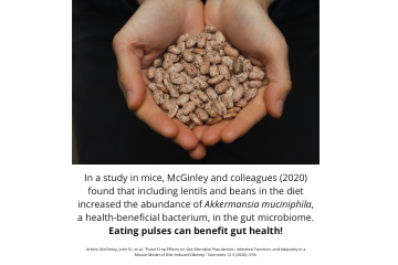 Legume Science Post #8 Feb-23-2021 - Pulses and Gut Health