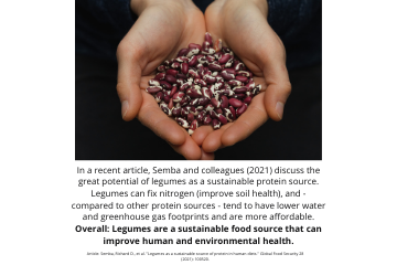 Legume Science Post #9 Mar-2-2021 - Legumes as a Sustainable Source of Protein